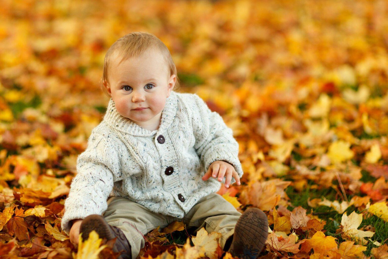 autumn-275920_1920